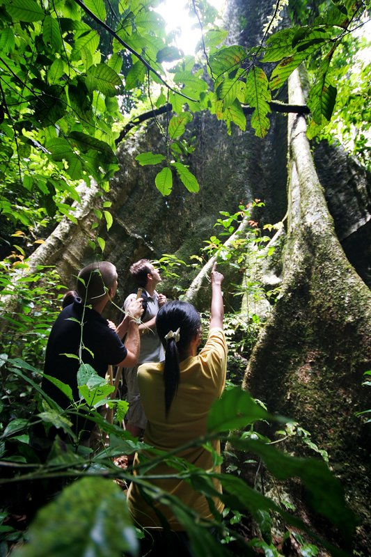 Elephant Hills Luxury Tented Camp Khao Sok National Park Thailand Activities Jungle Trekking 1