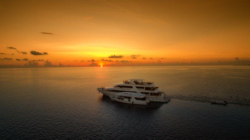 Carpe Vita Sunset