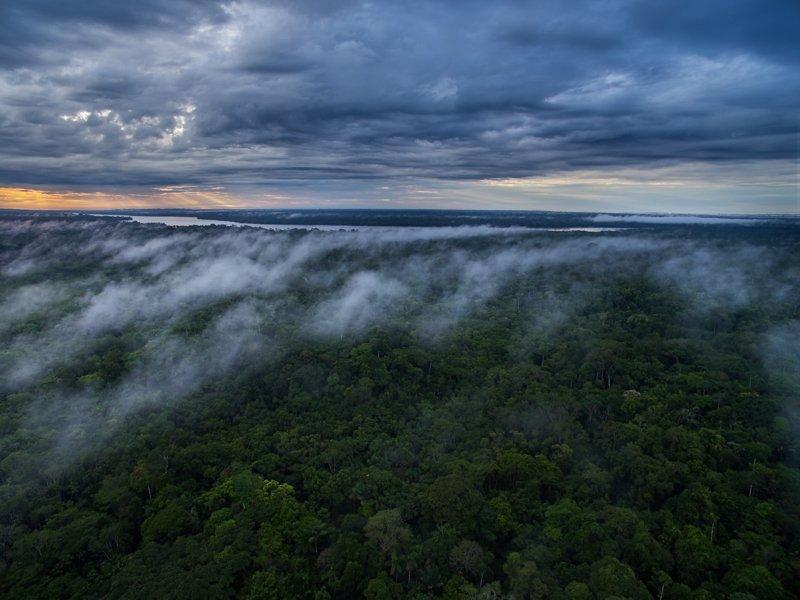 Images courtesy Tropic Eco Tours, Amazon Sani Lodge Tour, -11