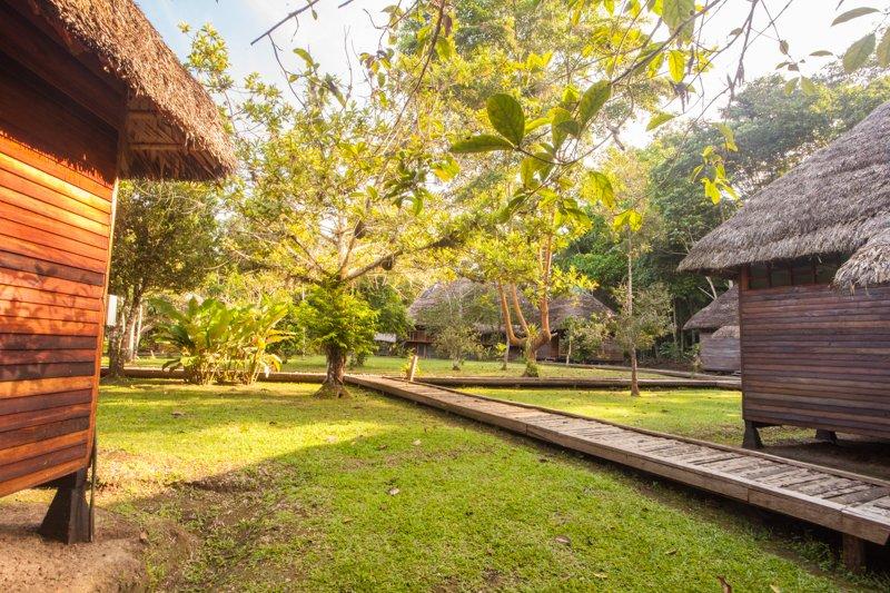 Images courtesy Tropic Eco Tours, Amazon Sani Lodge Tour, -2