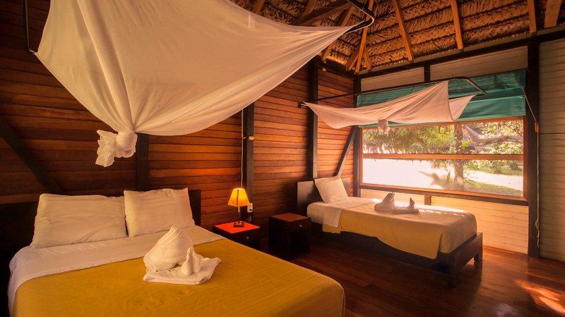 Images courtesy Tropic Eco Tours, Amazon Sani Lodge Tour, -3