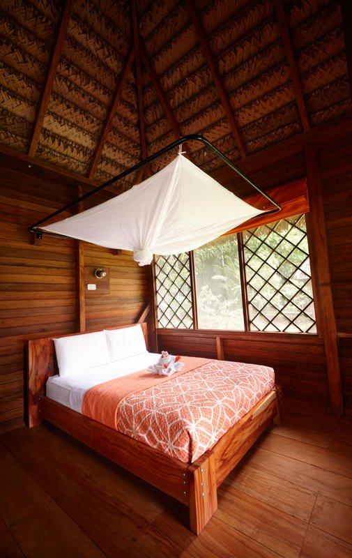 Images courtesy Tropic Eco Tours, Amazon Sani Lodge Tour, -4