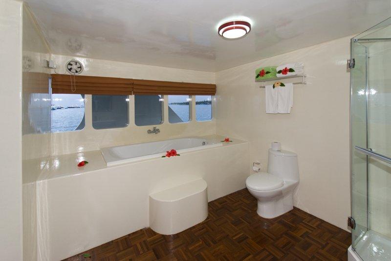 Suite Cabin VIP Bathroom 03