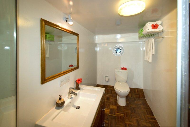 standardbathroom3