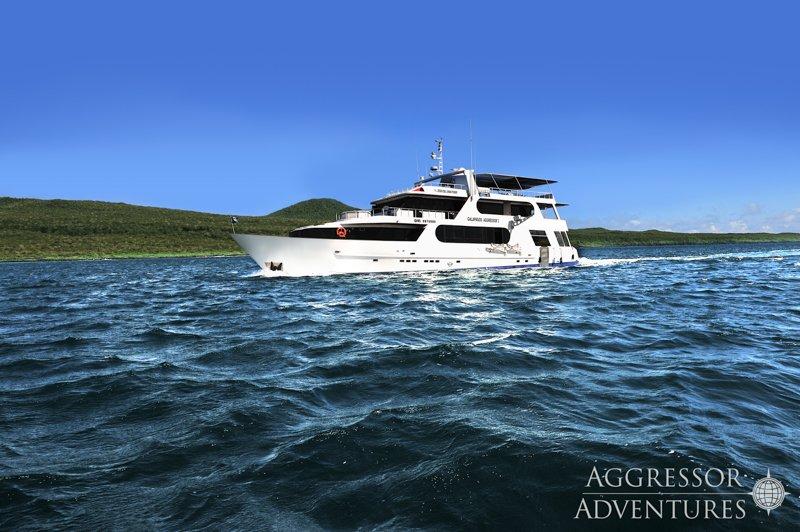 Galapagos Aggressor III-14