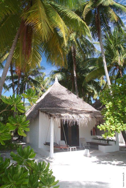 Angaga Island Resort _ Beach Bungalow 2