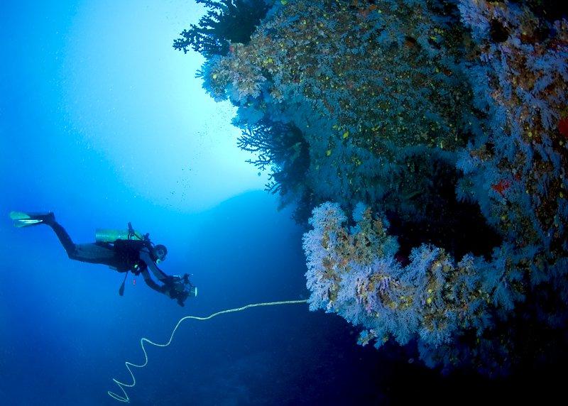 Paradise Taveuni Resort-21