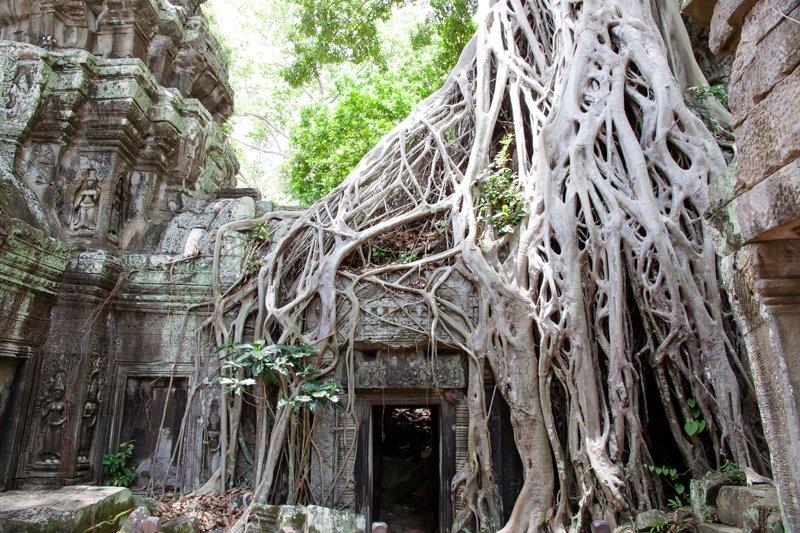 Cambodia Temples of Angkor -11