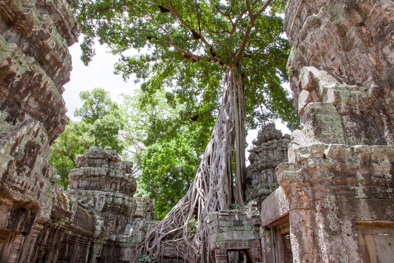 Cambodia Temples of Angkor -12