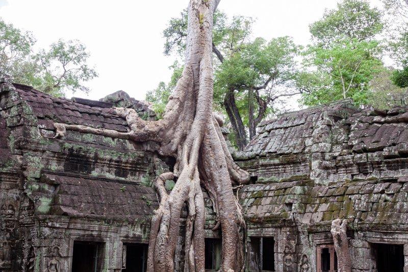 Cambodia Temples of Angkor -15