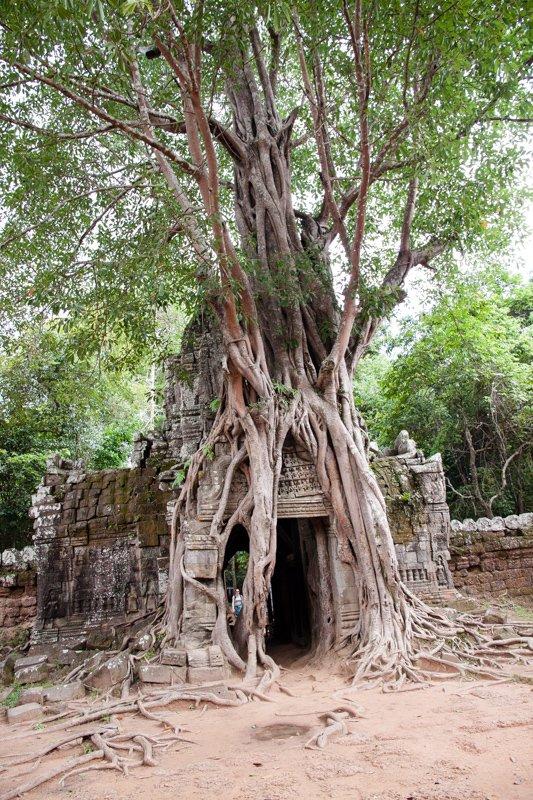 Cambodia Temples of Angkor -25