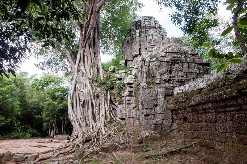 Cambodia Temples of Angkor -27