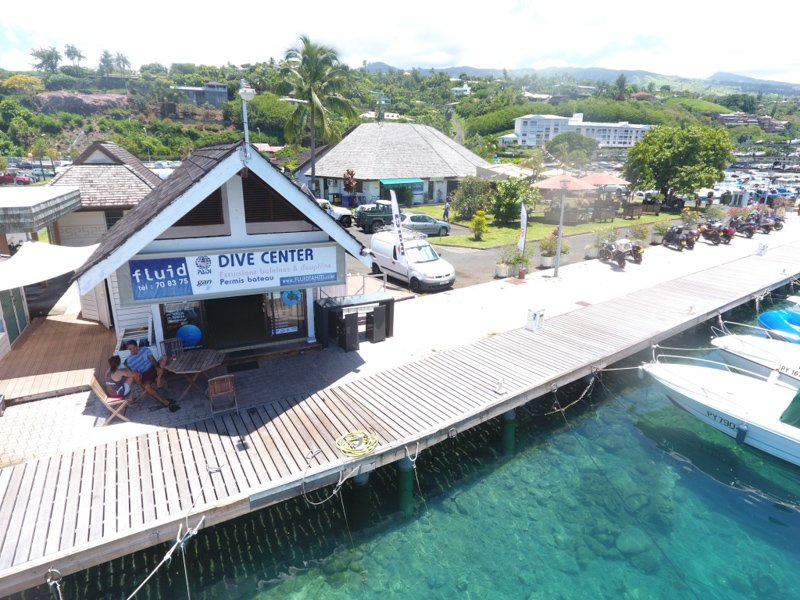 FLUID DIVE SHOP